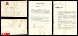 1889 - REGNO - 2 Cent. - GRANDE PIEGO LETTERA - Con Testo - Da  BARI A MEINA - Via ARONA
