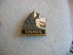 Pin's Chien Husky à TIGNES - Animaux