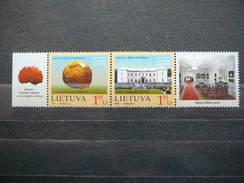Palanga Amber Museum. Lietuva Litauen Lituanie Litouwen Lithuania 2009 MNH # Mi. 1009/0 (04dv) - Litouwen