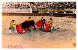 14005   Bull Fighting   Death Of  The  Matador - Corrida