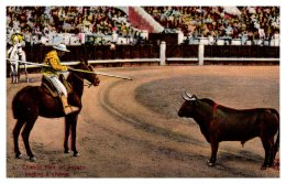 14205   Bull Fighting  Inviting A Charge - Corrida