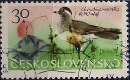 PIA - CECOSLOVACCHIA  - 1965 : Uccelli Di Montagna : Piviere  -  (Yv 1433 )