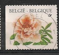 Belgie Belgique COB 2733 GEEL - Belgium