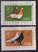 PIA - UNGHERIA - 1957-58 -  Esposizione Internazionale Di Colombi A Budapest  - (Yv 1230-34)