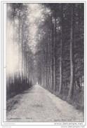 Overyssche Overijse Drève 1907 Mooie Stempel En Postzegel Obliteration Lagaert N°30 (In Zeer Goede Staat) - Overijse