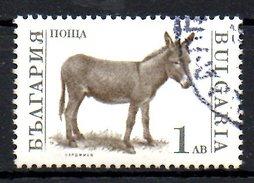 BULGARIE. N°3395 Oblitéré De 1991. Ane.