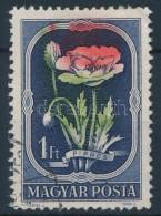 O 1951 Virág 1 Ft ErÅ'sen Eltolódott Piros és Zöld Színnyomatok - Zonder Classificatie