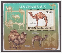 192 Comores 2009 Kameel Camel S/S MNH