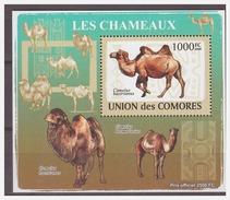 193 Comores 2009 Kameel Camel S/S MNH
