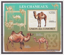 194 Comores 2009 Kameel Camel S/S MNH