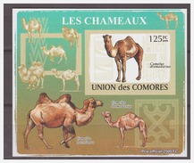 0196 Comores 2009 Kameel Camel S/S MNH Imperf - Timbres
