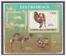 197 Comores 2009 Kameel Camel S/S MNH Imperf