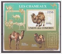 198 Comores 2009 Kameel Camel S/S MNH Imperf