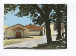 CPSM St Saint Amour (71) Le Caveau ( COMBIER CIM) - France