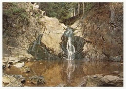 Hautes Fagnes (Hohes Venn) - La Cascade Bayehon Et La Cuve - Inutilisé - Autres