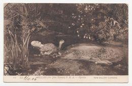 Gemäldekarte - Sir John Everett Millais - Ophelia (101 LL.) - Gelaufen 1906 - Pittura & Quadri