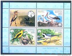 TH_ Belarus 2002 Birds Of Year Bl. S/S MNH - Pájaros