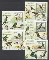 WW41 2009 UNION DES COMORES FAUNA BIRDS LES GUEPIERS MEROPS 5LUX BL MNH