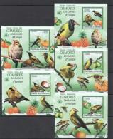 WW52 2009 UNION DES COMORES FAUNA BIRDS LES LORIOTS D'EUROPE 5LUX BL MNH