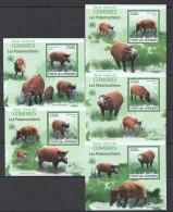 WW53 2009 UNION DES COMORES FAUNA WILD PIGS LES POTAMOCHERES 5LUX BL MNH