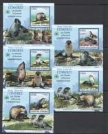 WW54 2009 UNION DES COMORES FAUNA ANIMALS LES OTARIES ANTARCTIQUE 5LUX BL MNH