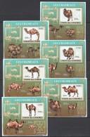 WW64 2009 UNION DES COMORES FAUNA ANIMALS CAMELS LES CHAMEAUX 6LUX BL MNH