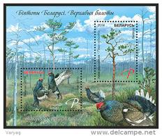 TH Belarus 2014 Bird Birds Swamps Biotopes Bogs Blackcock Bl. S/S MNH - Birds