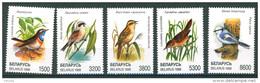 TH_ Belarus 1998 Birds Bird Fauna 5v MNH