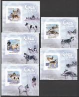 WW185 2009 GUINE-BISSAU PETS DOGS CAES DE TRENO HUSKY !!! CARDBOARD 5LUX BL MNH