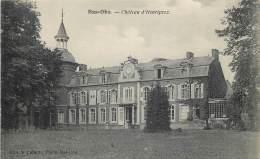 Wanze - Bas-Oha - Château D'Henriprez - Wanze