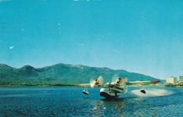 Alaska Coastal-Ellis Seaplane Amphibian Take Off From Ketchikan AK, C1960s Vintage Postcard - 1946-....: Moderne