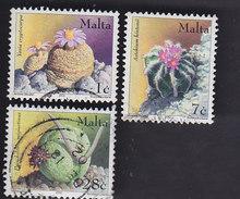 Malte: Cactées Et Plantes Grasses 1212/1214 - Sukkulenten