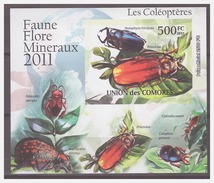 211 Comores 2011 Insect Bugs Beetle S/S MNH Imperf