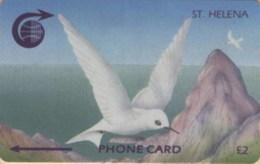 ST. HELENA : STH-06 £2   White Tern  Old Logo  3CSHA  MINT - St. Helena Island