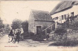 Vue à Noville-les-Bois (Edit. Théo Dock, Animée, Attelage 1908...adhésif Au Dos) - Fernelmont