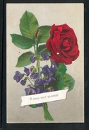 A Vous Mon Souvenir - Rose Rouge Et Violettes - LR1695 - Fleurs