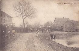 Lincé - Haut Du Village (animée, Vaches, Peu Vue) - Sprimont
