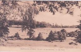 76 - NEUFCHATEL  EN BRAY - LES FOINS - Neufchâtel En Bray