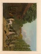 Retour De La Chasse Veritable Gravure De 1945  J.J.Biedermann (23cm X 16 Cm) Bon Etat - Estampes & Gravures