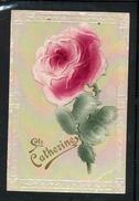 Rose En Relief - Ste Catherine - LR1699