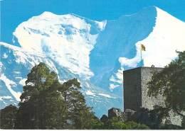 SUISSE (Swiss Switzerland Schweiz ) BE Berne - FRUTIGEN Ruine Tellenberg - CPSM Grand Format - - BE Bern