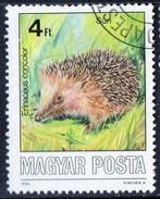 PIA - UNGHERIA :  1986 :  Animali Selvatici Protetti : Riccio - (Yv 3073)