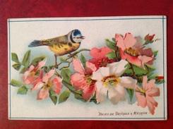 Roses De Bengale Et Mésange - Vieux Papiers