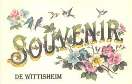 67 - BAS RHIN / Fantaisie Moderne - CPM - Format 9 X 14 Cm - WITTISHEIM - France