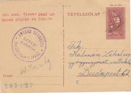 Entier Postal De Hongrie Scan R/V..