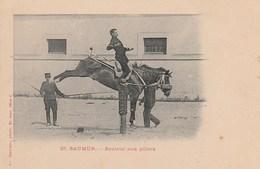 SAUMUR - Sauteur Aux Piliers - éditions Voelcker  27 - Cheval - Non écrite - Saumur