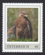ÖSTERREICH 2015 ** Mäusebussard / Buteo Buteo - PM Personalized Stamp MNH - Aquile & Rapaci Diurni