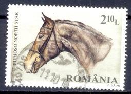 ROEMENIE  (COE 586)