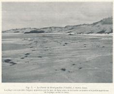 Photo (1925) : BRETIGNOLLES (Vendée), Marée Basse, La Plage Couverte D'algues, Ligne Noire De La Tourbe, La Dune - Vieux Papiers
