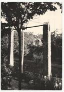 13. SAINT-REMY De PROVENCE - MAS De MARIE MAURON 1960